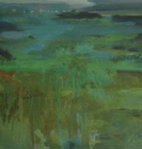 tide out marshland vegetation